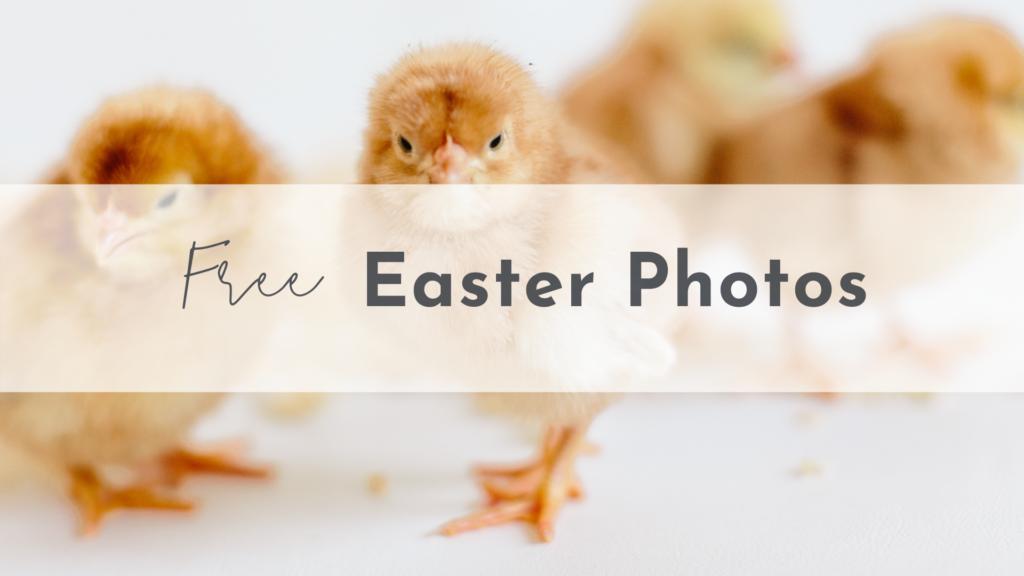 Free Easter Photos